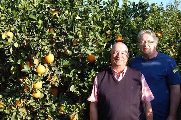Segrarna i måndagens bästboll, Ingvar och Gunnar pallade apelsiner för att fira segern