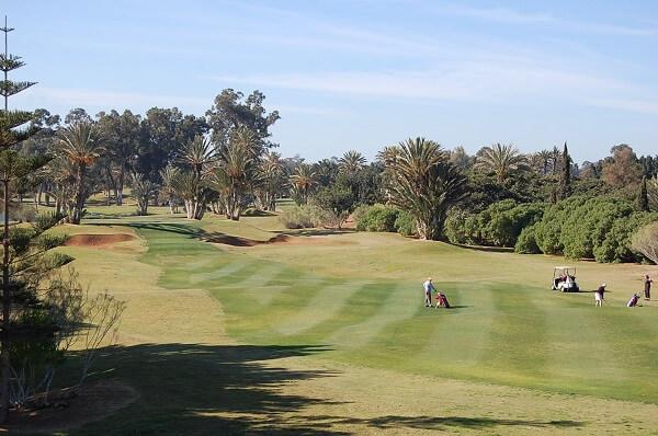 Härliga fairways. Flera av veckans gäster har spelat golf på Kanarieöarna i januari men skulle hellre rekommendera Agadir.