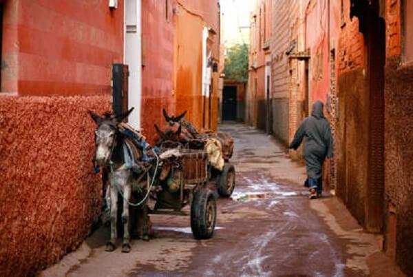 """På bakgatorna hittar man det """"gamla"""" Agadir."""