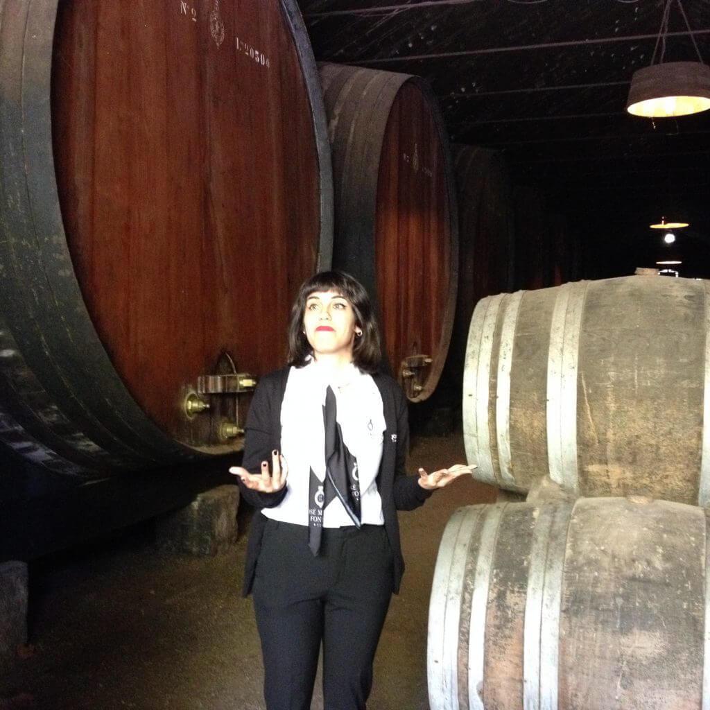Sedan var det dags att besöka José Maria da Fonseca vin tillverkning där bl.a det kända vinet Pieriquita tillverkas. Mycket intressant och vi avslutade med en liten vinprovning och lite vin shopping.